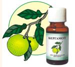 Эфирные масла: бергамот