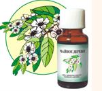 Эфирные масла: чайное дерево