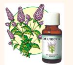 Эфирные масла: мелисса