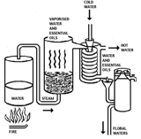 method-of-essential-oil
